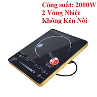 [Bếp không kén nồi chảo] Bếp hồng ngoại 2 vòng nhiệt Hayasa công suất 2000W, mỏng gọn, mặt kính dễ vệ sinh, phím cảm ứng-hàng chính hãng thumbnail
