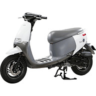 Xe Ga 50cc DB Gofast 2020 thumbnail