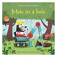 Usborne Mole in a hole thumbnail