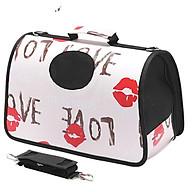 Túi xách vận chuyển chó mèo xudapet - XDP01TXVC thumbnail