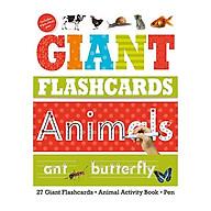 Giant Flashcards Animals thumbnail