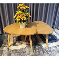 2 Cái Bàn Sofa Đơn Giản - Combo Bàn Cafe Đẹp thumbnail