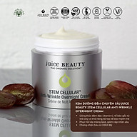 Kem Dưỡng Chống Lão Hóa Sâu Ban Đêm Hữu Cơ Cao Cấp Juice Beauty Stem Cellular Anti-Wrinkle Overnight thumbnail