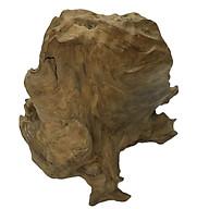 Gỗ lũa ngọc am tự nhiên phong thủy Ma 19 (34cm x 40cm) thumbnail