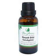 Tinh dầu khuynh diệp (Bạch đàn) - Eucalyptus 50ml Bio Aroma thumbnail