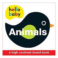 Animals Wipe Clean Activity Flashcards - Wipe Clean Activity Flashcards (Board book) thumbnail