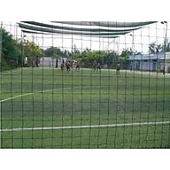 Lưới rào sân bóng sợi cước PE 2.5Ly thumbnail