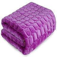 Thảm nhung trải giường mùa đông 2mx2.2m (Ngẫu nhiên) thumbnail