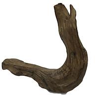 Gỗ lũa ngọc am tự nhiên phong thủy Ma 25 (34cm x 38cm) thumbnail