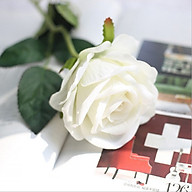 Bông hoa hồng lụa thumbnail