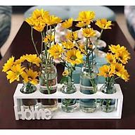Set 5 lọ hoa kèm kệ gỗ trang trí tặng kèm móc treo 3D ( giao ngẫu nhiên) thumbnail
