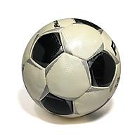 Quả bóng đá cỡ lớn HPL thumbnail