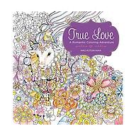 True Love A Romantic Coloring Adventure thumbnail