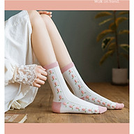 Combo 3 Đôi Tất Cao Cổ Gam Màu Pastel Nữ Tính Phối Hình Trái Đào Hồng Xinh Xắn TN96 thumbnail