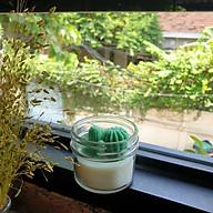 Nến thơm tinh dầu gỗ thông hình xương rồng xanh và sen đá 85g giúp thơm phòng, thư giãn giảm stress, khử mùi (Giao hình ngẫu nhiên) thumbnail