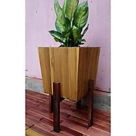 Chân giá đỡ chậu cây, đôn gỗ để cây cảnh, BONSAI, trang trí nhà cửa bằng gỗ MUỒNGĐEN,IKLV- D-28CM CAO 30CM. MÀU NÂU ĐEN. thumbnail