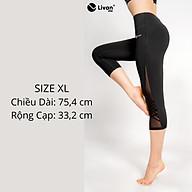 Quần Legging Lửng Phối Lưới Thể Thao Livan Sport Form Ôm Co Giãn Cao Cấp thumbnail