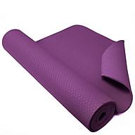 Combo Thảm tập yoga cao cấp TPE 2 lớp tặng kèm túi lưới - màu ngẫu nhiên thumbnail