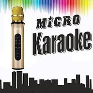 Micro Không Dây Bluetooth Karaoke - Hàng Chính Hãng PKCB thumbnail