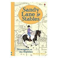 Usborne Sandy Lane Stables Strangers at the Stables thumbnail