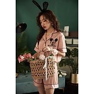 Bộ Lụa Mặc Nhà Đồ Ngủ Pijama Lụa Cao Cấp Siêu Mát Mềm Mịn - ELSA thumbnail