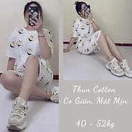 Đồ Mặc Nhà Thời Trang, Bộ Thun Lửng Nữ Cotton Họa Tiết Hoạt Hình Dễ Thương, Vải Đẹp May Kỹ thumbnail