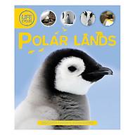 Life Cycles Polar Lands thumbnail