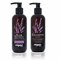 Bộ Đôi Dầu Gội Và Dầu Xả Hoa Đậu Biếc Nagano Janpan 250ml - Shampoo & Hair Treatment Nagano 250ml - Sự kết hợp hoàn hảo giúp dưỡng tóc bồng bềnh, mềm mượt thumbnail