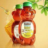 Mật Ong hữu cơ thiên nhiên Kirkland Singnature Honey Bear 680gr nhập Mỹ thumbnail