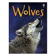 Usborne Wolves thumbnail
