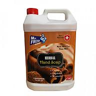 Nước rửa tay khử mùi Mr.Fresh 5L Hương Quế thumbnail