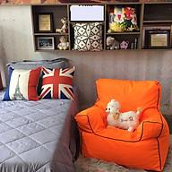 Ghế Lười Sofa Chair Cam thumbnail