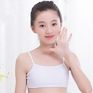 Combo 5 áo lá học sinh vải cotton không mút cổ ngang Từ 30kg đên 50kg thumbnail
