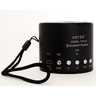 Loa Bluetooth Đa Năng Wster WS-Q9 - Hàng Nhập khẩu ( Nhiều màu) thumbnail