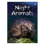 Usborne Night Animals thumbnail