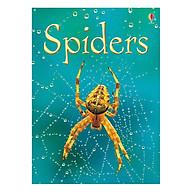 Usborne Spiders thumbnail