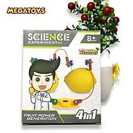 Đồ chơi giáo dục STEM-Tự tạo ra điện bằng trái cây - 360 thumbnail
