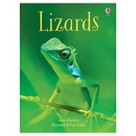 Lizards thumbnail