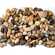 1kg đá sỏi màu hỗn hợp lớn - đá trang trí trồng cây - trang trí bể cá - sân vườn thumbnail