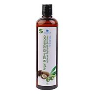 Dầu Gội Phục Hồi Và Bảo Vệ Tóc Chiết Xuất Hunca Care Olive And Argan Oil (700ml) thumbnail