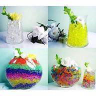 Combo 10 túi đất tinh thể trồng cây, cắm hoa ngậm nước lung linh sắc màu 1000 viên thumbnail