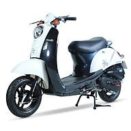 Xe ga 50cc Scoopy màu trắng yếm đen thumbnail
