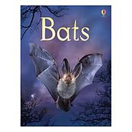 Usborne Bats thumbnail