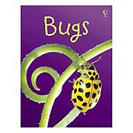 Usborne Bugs thumbnail