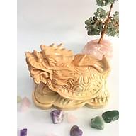 Long quy (Rùa đầu rồng) vàng - đá thiên nhiên Việt Nam 15cm thumbnail