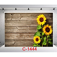 TẤM PHÔNG VẢI 3D CHỤP ẢNH kích thước 125x80cm Mẫu C-1444 thumbnail