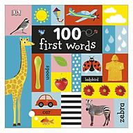 DK 100 First Words thumbnail