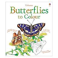 Usborne Butterflies to Colour thumbnail