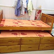 Giường Tầng UNI092(1m20)-OAK thumbnail