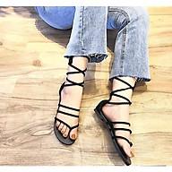 Giày Sandal Kẹp Chiến Binh DD01 thumbnail